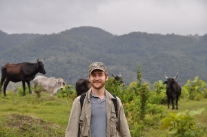 Chris checking the cows