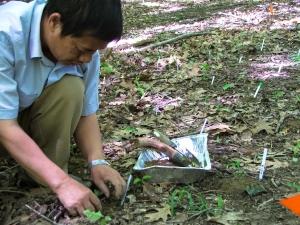 Furong Long (Yunnan, China) experimental introduction